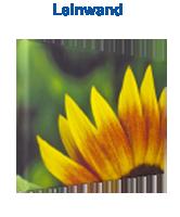 Leinwand - Leinwanddruck - alle Formate